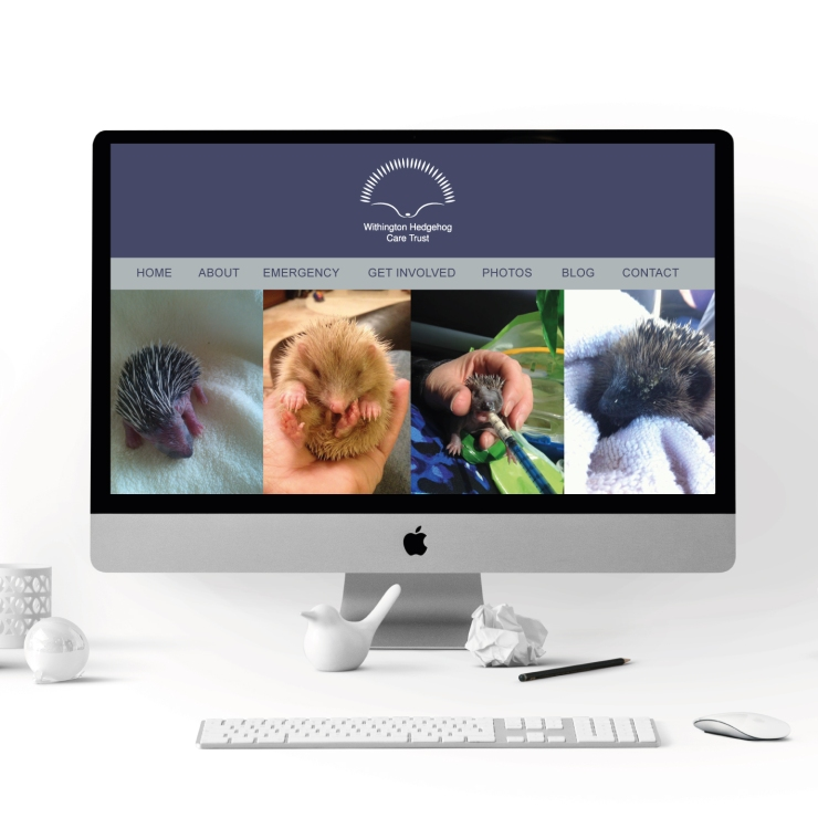 WIthington-Hedgehog-care-trust-website-example